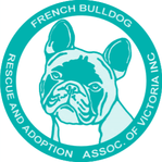 French Bulldog Rescue & Adoption - French Bulldog Rescue